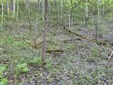 0002 Pence Branch Road - Photo 20