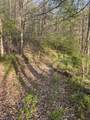 0002 Pence Branch Road - Photo 29