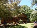 3020 Forest Springs Drive - Photo 3