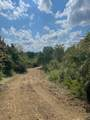 Tract 3 Brookstown Road - Photo 5