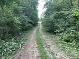 1590 Mushroom Road - Photo 32