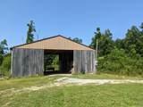 3705 Bee Creek Road - Photo 10