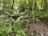 1111 Disappointment Hollow Road - Photo 3