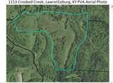 1153 Crooked Creek Road - Photo 1