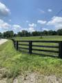 1180 Clay Lick Road - Photo 3