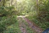 1 Brushy Fork Bird Ridge - Photo 10
