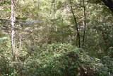 1 Brushy Fork Bird Ridge - Photo 11