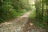 1 Brushy Fork Bird Ridge - Photo 12