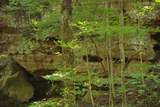 1 Brushy Fork Bird Ridge - Photo 2