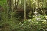 1 Brushy Fork Bird Ridge - Photo 3