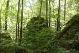 1 Brushy Fork Bird Ridge - Photo 4
