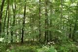1 Brushy Fork Bird Ridge - Photo 7
