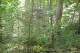 1 Brushy Fork Bird Ridge - Photo 8
