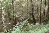 1 Brushy Fork Bird Ridge - Photo 9