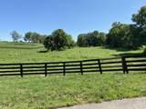 7333-S Tates Creek Road - Photo 3