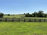 7333-S Tates Creek Road - Photo 4
