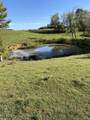 320 Flannery Hollow Road - Photo 14