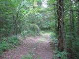 4 Pot Ripple Creek Road - Photo 38