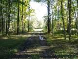 0 Gum Sulpher Road - Photo 14