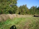 0 Gum Sulpher Road - Photo 5