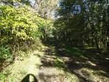 0 Gum Sulpher Road - Photo 6