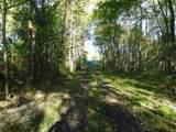 0 Gum Sulpher Road - Photo 9