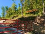 1010 Upper Cane Creek Road - Photo 11