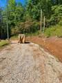 1010 Upper Cane Creek Road - Photo 54