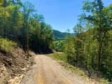 1010 Upper Cane Creek Road - Photo 56