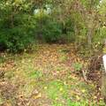 955 Old Ruckerville Road - Photo 10