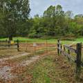 955 Old Ruckerville Road - Photo 3