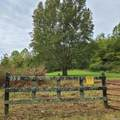 955 Old Ruckerville Road - Photo 4