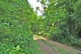 4200 Mink Run Road - Photo 8