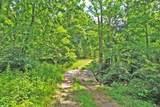 4200 Mink Run Road - Photo 9