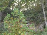 7250 Old Beaver Rd - Photo 53