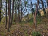 8101 Camp Nelson Rd - Photo 29