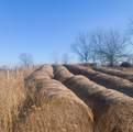 695 Mill Creek Road - Photo 16