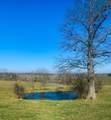 695 Mill Creek Road - Photo 6