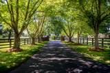 1125 Bridlewood Lane - Photo 5