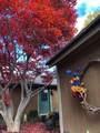 305 Cedarbrook Court - Photo 25