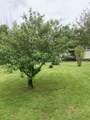 398 Dove Tree Lane - Photo 34