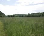 1 Upper Brush Creek Road - Photo 3
