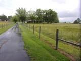 3173 Levee Road - Photo 75