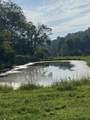 10632 Lower Line Creek Road - Photo 30