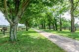 3589 Spurr Road - Photo 67