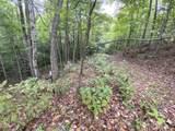 353 Timber Ridge Road - Photo 63