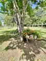 3221 Dixie Bend Road - Photo 54