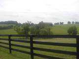 932 Ky Hwy 982 - Photo 56