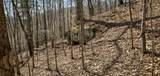 1 Sycamore Fork Road - Photo 7