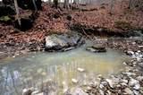 338 Cow Creek - Photo 4